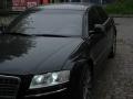 AudiS8 d301